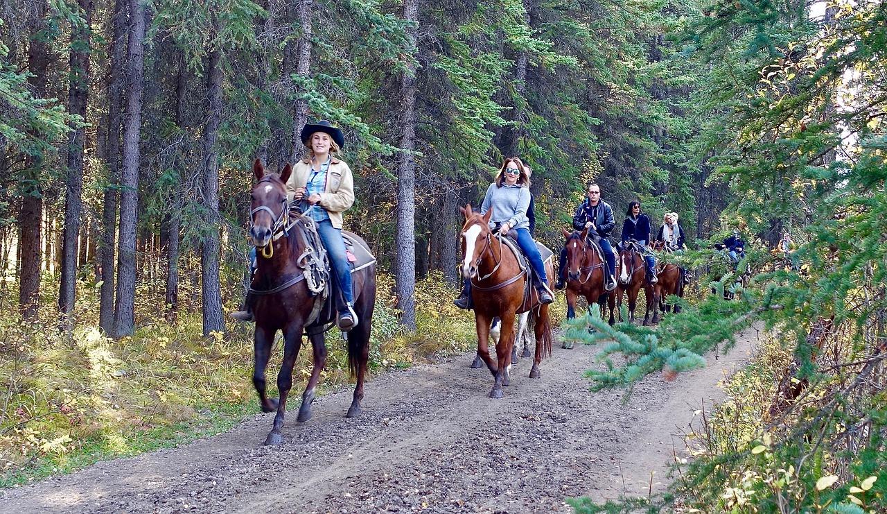riding-1935051_1280